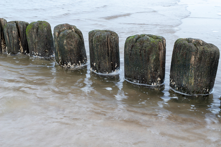 Old breakwater bollards on the sea beach. Coast in central europe. Season of the autumn. Standard-Bild - 112527463