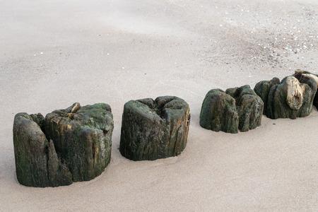 Old breakwater bollards on the sea beach. Coast in central europe. Season of the autumn. Standard-Bild - 112527472