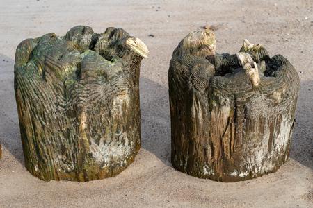 Old breakwater bollards on the sea beach. Coast in central europe. Season of the autumn. Standard-Bild - 112527474