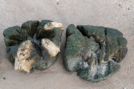 Old breakwater bollards on the sea beach. Coast in central europe. Season of the autumn. Standard-Bild - 112527477