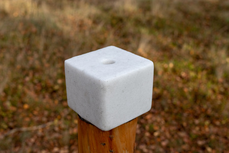 A salt cube prepared for forest animals. Lick in the forest near the pasture. Season of the autumn. Stockfoto