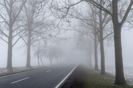 Asphalt road in the fog. A route connecting towns in central Europe. Season - winter.