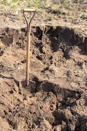 Spade stuck in the ground in a home garden. Garden cleaning works. Season of the spring. Reklamní fotografie