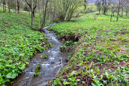 A fast stream in mountainous terrain. Water flowing in the river shown in a long exposure. Season of the spring.