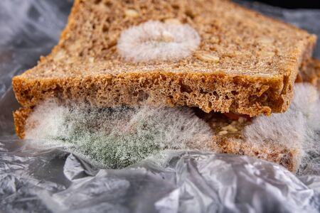 Moldy sandwich with smoked meat in a plastic bag. Dark bread with grains covered with white mold. Black background. 스톡 콘텐츠