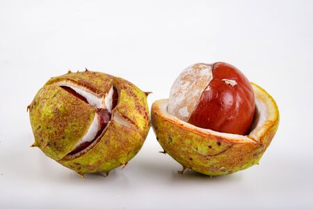 Chestnuts and shells on a white table. Ripe chestnut fruit. White background. Фото со стока