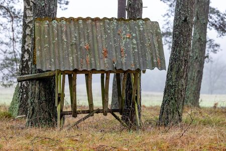 Wooden empty feeding rack standing in the forest. Feeding place for wild game. Autumn season.