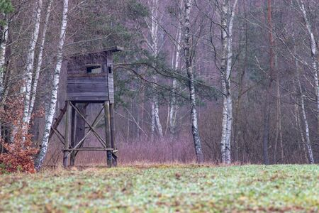 Hunting pulpit standing on the edge of the forest. Wooden structure for hunting. Autumn season.