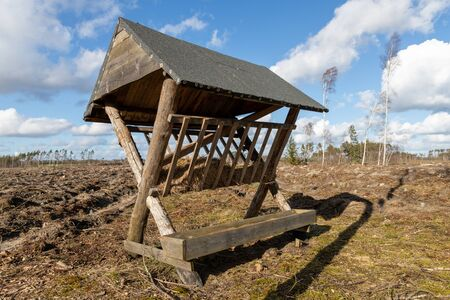 Wooden empty feeding rack standing in the forest. Feeding place for wild game. Spring season. Imagens