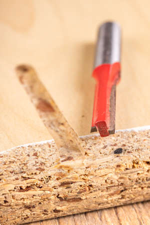 Face mill and chipboard groove. Joiner's accessories for small jobs. Workshops in the workplace. Stok Fotoğraf
