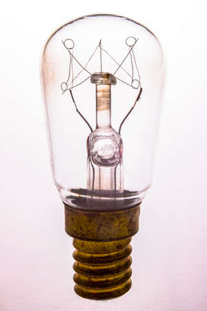A small incandescent lamp used for lighting in refrigerators. Electrical accessories used in households. Light background.