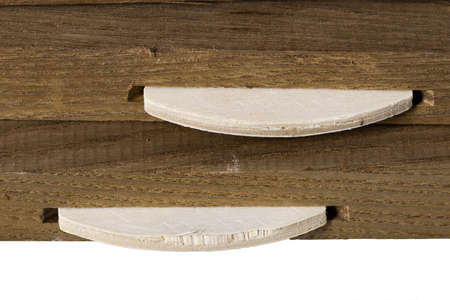 Connecting colored ash planks with lamellas. Pieces of wood prepared for gluing with carpentry glue. Isolated background.