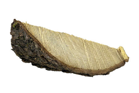 Cross section of a piece of pine wood. Wood grain visible in cross section. Isolated background. Standard-Bild