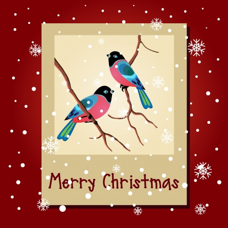 Winter card with birds Merry Christmas lettering Vector