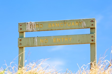 bird sanctuary: Bird sanctuary wooden sign