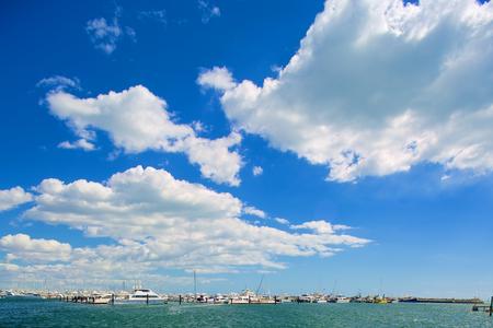 Sail boats: Sail Boats on a beautiful day in the marina