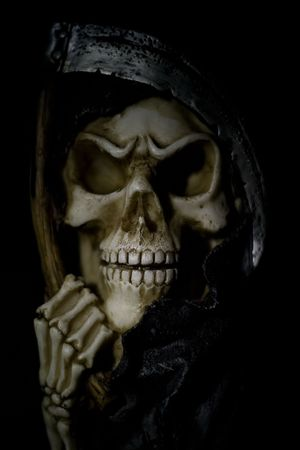 Scull with a black background and shallow DOF