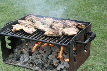 chicken on a barbeque Stok Fotoğraf - 531808