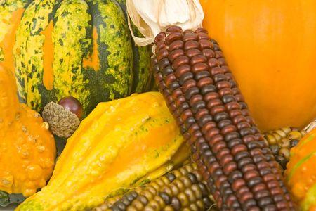 corn squash pumpkin background photo