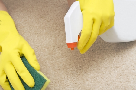 carpet stain: cleaning stain on a carpet with a sponge Stock Photo