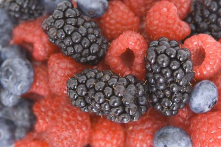 colorful berry background texture