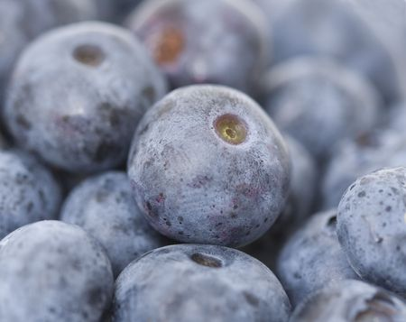 macro shot of a tasty blueberries fruit