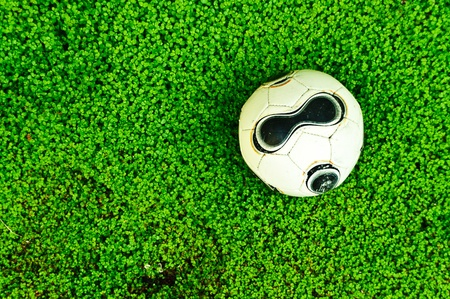 throb: Ball prepared in the lawn to start playing