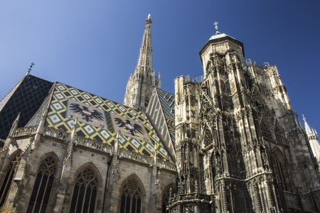 saint stephen cathedral: St. Stephans Cathedral in Vienna, Austria