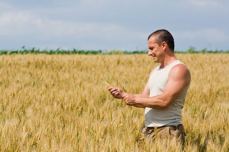 man field: Young strong man with t-shirt in a wheat field