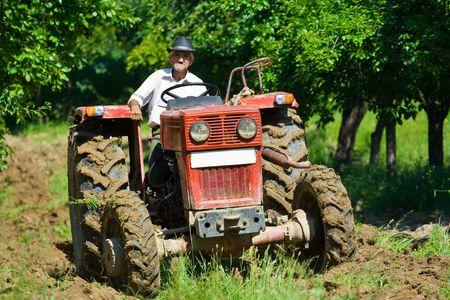 Old agricultor arando entre los árboles en un huerto  Foto de archivo - 3219568
