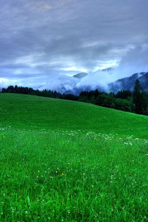 Landscape with meadow and forest in a cloudy day Stock Photo - 3358822