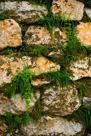 Wall of stones with grass growing between them Stock Photo - 3358858