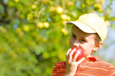 orchards: Beautiful boy eating a delicious red apple Stock Photo