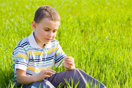 Portrait of a cute kid in a wheat field photo