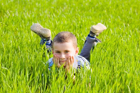 Portrait of a cute kid in a wheat field photo