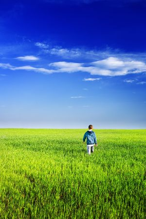 Handsome little young man in a wheat field Stock Photo