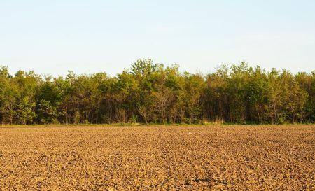 plough: Plough soil under blue sky Stock Photo