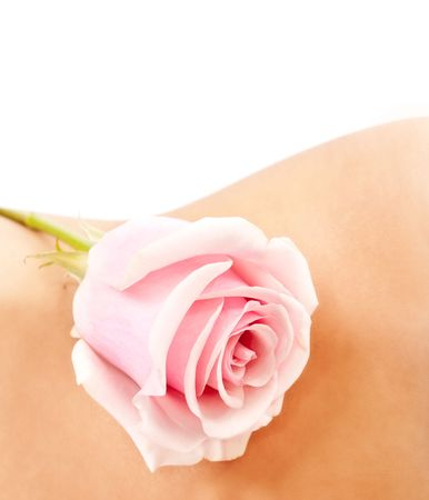 Pink rose on a womans waist, isolated on wihte background photo