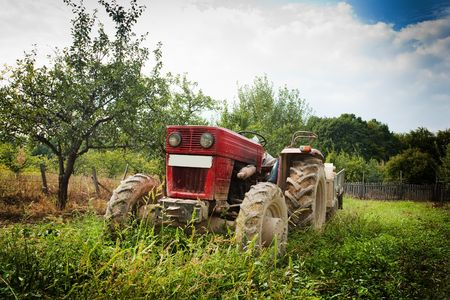 Red tractor in grass in an orchard photo