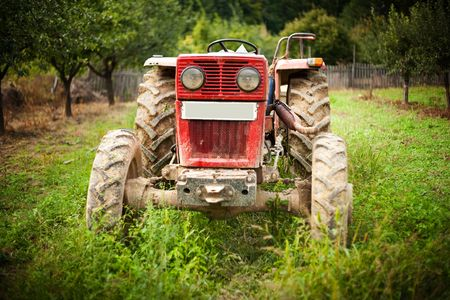 Red tractor in grass in an orchard Stock Photo - 5547892