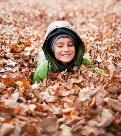 Cute kid playing with fallen leaves in a forest Stock Photo - 5906776