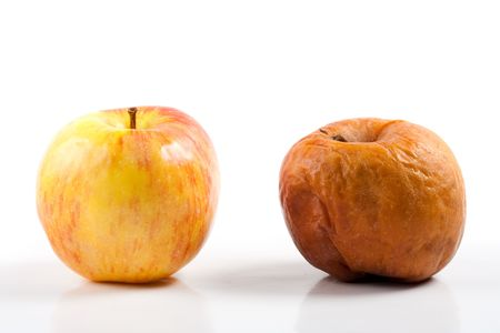 Two apples, one good and one rotten, isolated on white background photo