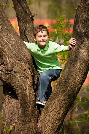 climbing sport: Portrait of a happy child climbing in a tree in a park