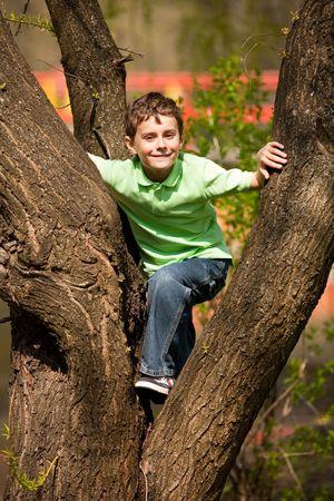 ni�o escalando: Retrato de un ni�o feliz, escalada en un �rbol en un parque Foto de archivo