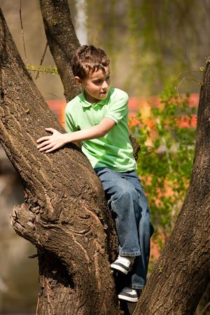 Portrait of a happy child climbing in a tree in a park photo