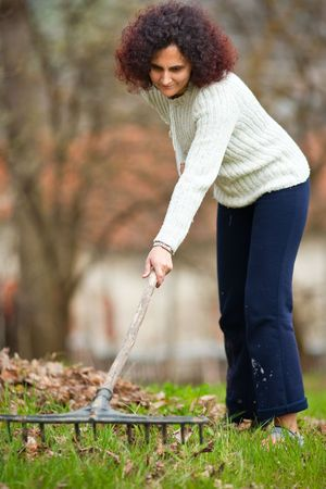 Young redhead pretty country girl using a rake to clean up of the fallen leaves photo