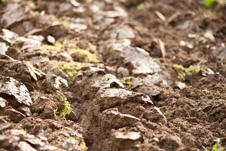 Close up shot of plough soil with shallow depth of field Stock Photo - 6792668