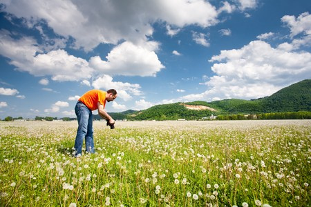 Caucasian photographer taking pictures of the dandelions in a sunny day photo