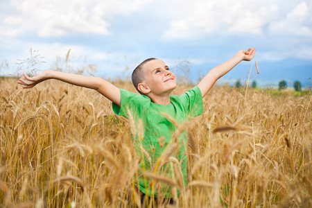 Portrait of a cute and happy kid in a wheat field Stock Photo