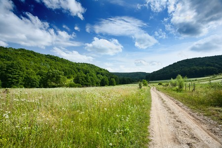 Landscape with forest and blue sky with clouds Stock Photo - 7730494